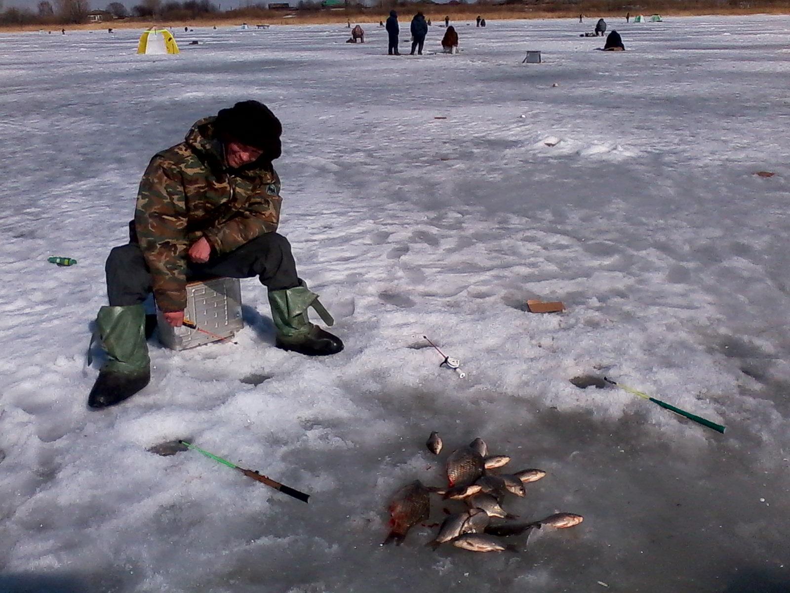 прогноз рыбалки в янауле