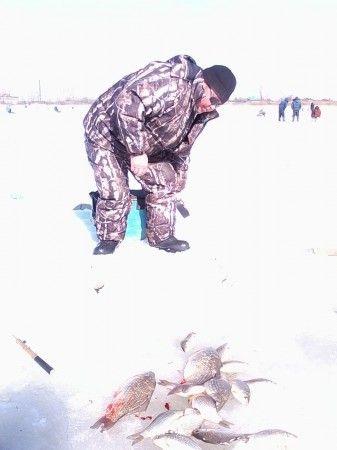 форум рыбаков долматово